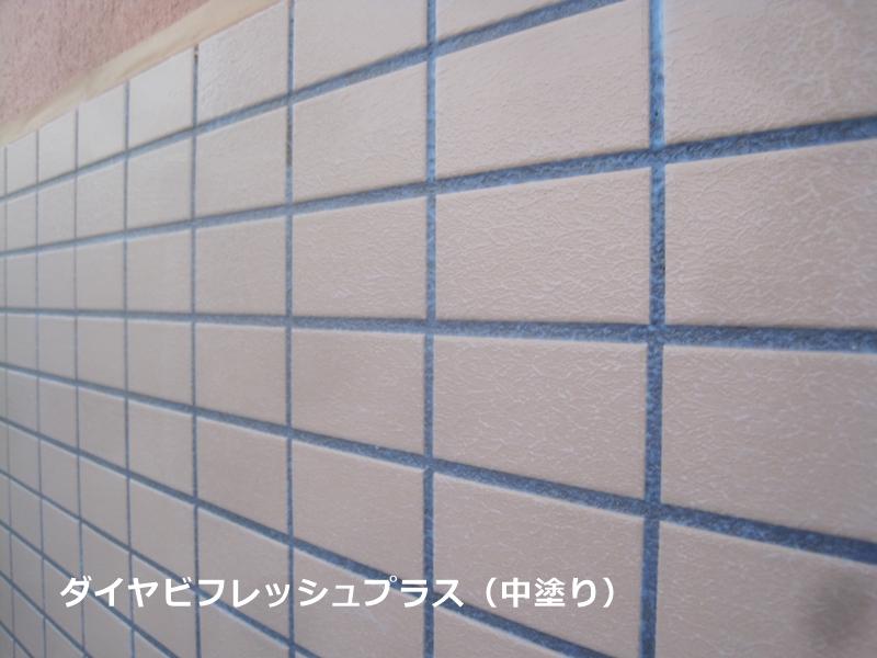 ダイヤビフレッシュプラス塗布(中塗り)